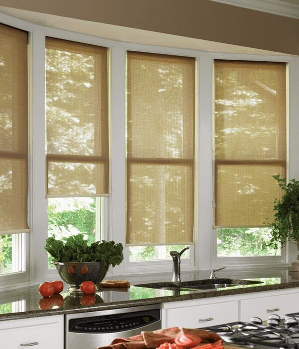 Roller_shades_in_4eb98379ea5fd
